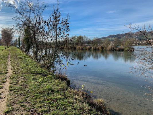 Ein Weg führt dem Ufer des Rheins bei Full entlang. (Foto PC)