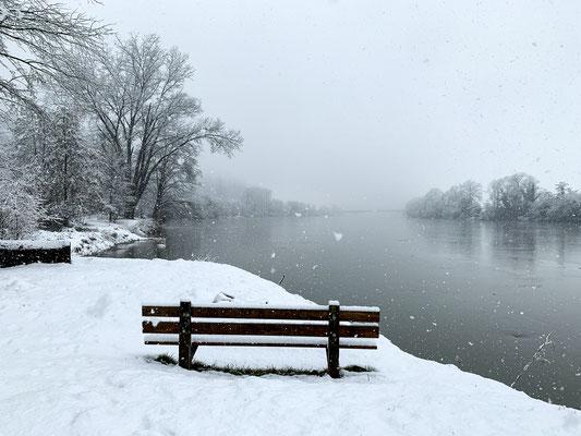 Das Rheinufer in seinem weissen Winterkleid. Rheinsulz, 14.01.2021 (Foto PC)