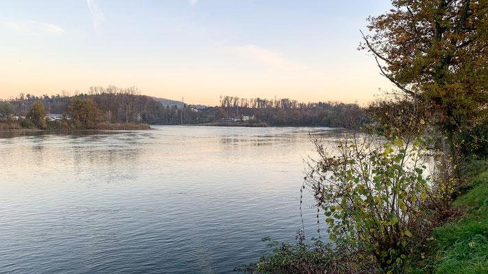Der Rhein bei Felsenau nahe der Mündung der Aare in den Rhein. (Foto PC)