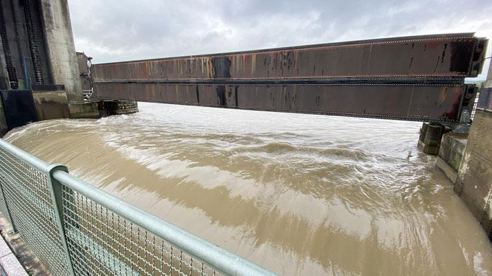 Hochwasser Rhein - Leibstadt 15.07.2021. (Foto CC)