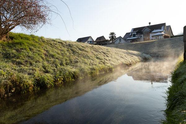 Morgennebel über dem Hinterwasserkanal bei Full, dem Heimatgewässer der abgestreiften Bachforellen. (Foto CC)