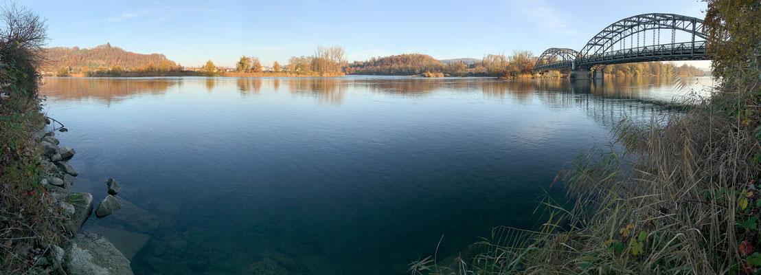 Der Rheinbereich der Aaremündung bei Felsenau (Leuggern). (Foto PC)