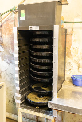 Der Brutschrank, wo die Brutbecken ständig mit frischem, sehr kalten Wasser durchströmt werden. (Foto CC)