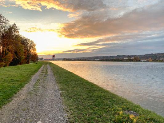 Der gestaute Rhein oberhalb des Stauwehrs bei Leibstadt. (Foto PC)