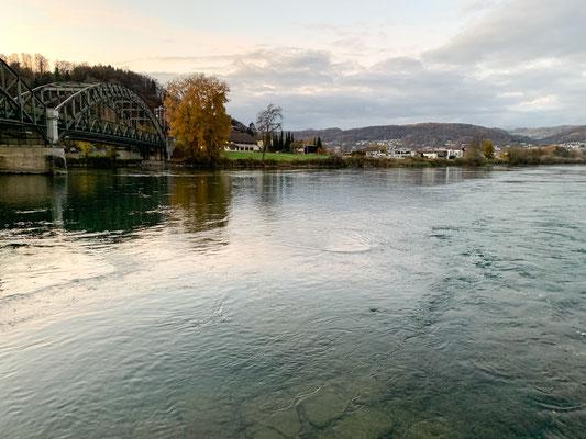 Blick auf den Rhein bei der Aaremündung vom gegenüberliegenden Ufer aus gesehen. Hier endet Revier 7. (Foto PC)