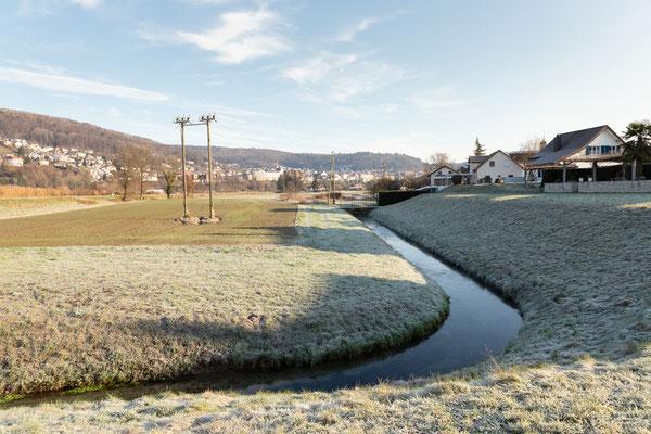 Der Hinterwasserkanal bei Full. Das Heimatgewässer der abgestreiften Bachforellen. Ein schöner kalter Januarmorgen begrüsst den Kanal und die heimkehrenden Bachforellen. (Foto CC)