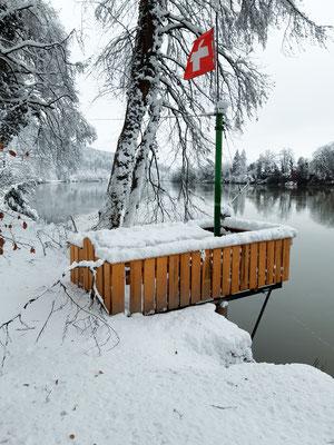 Fischergalgen im Winterkleid. Rheinsulz, 16.01.2021. (Foto HL)