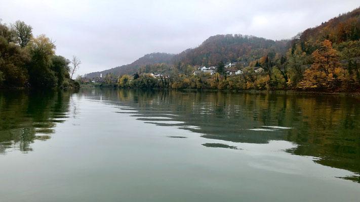 Zwischen Etzgen und Schwaderloch mit dem Boot auf dem herbstlichen Rhein. (Foto PC)
