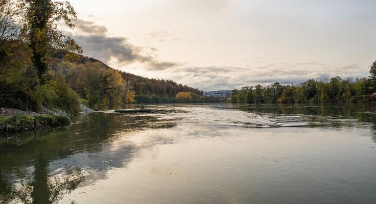 Mündung Sulzerbach in den Rhein. (Foto CC)