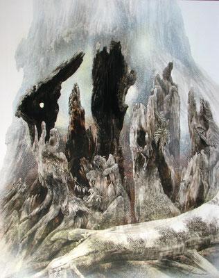 カミナリさまの樹