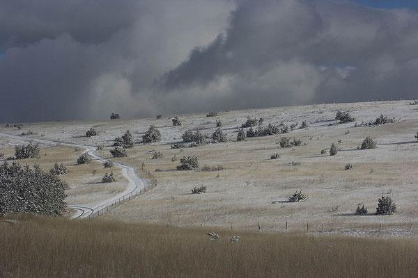 Causse de Sauveterre sous la neige 4