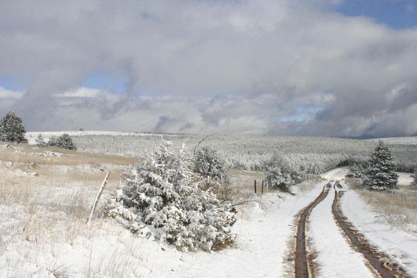 Causse de Sauveterre sous la neige 3