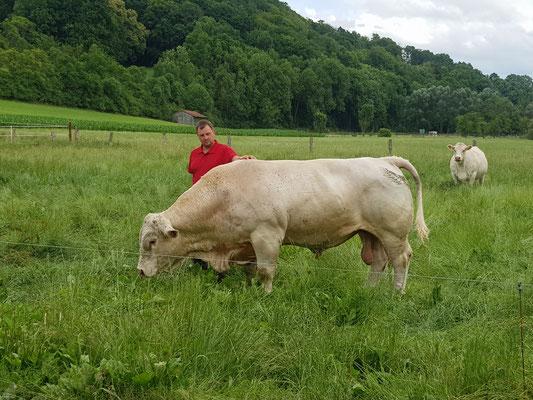 Dirk und Bulle Hansi auf der Wiese hinter dem Kuhstall