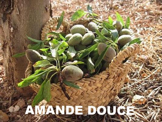 AMETHIC HUILE D'AMANDE DOUCE