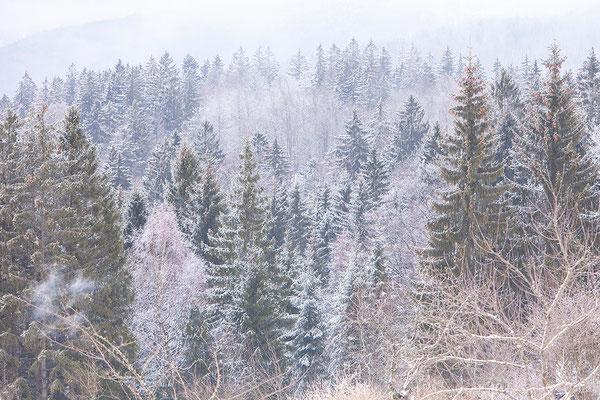 Bayerischer Wald, Duitsland