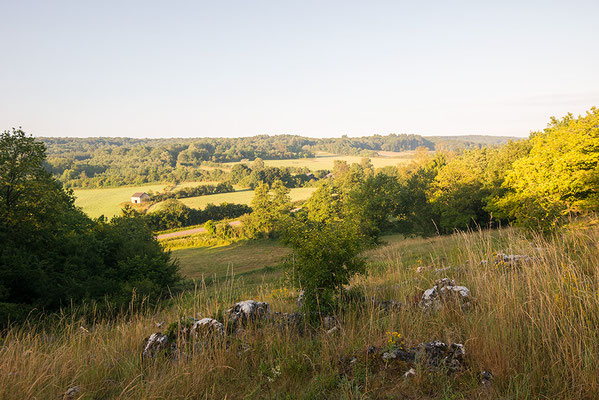 Heuvellandschap in Viroinval, België