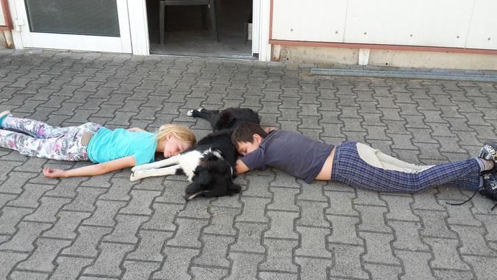 Die weite Anreise aus Niedersachsen und dann die Prüfung machte sehr müde