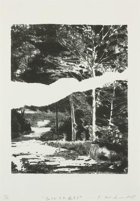 石化する森#3  2017 170×210mm 紙に石版画