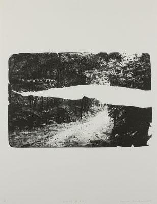 石化する森#5  2017 ○○○×○○○mm 紙に石版画