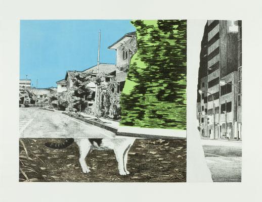 PAGE#10_迷いネコ 2016 395×540mm 紙にリトグラフ ed.5