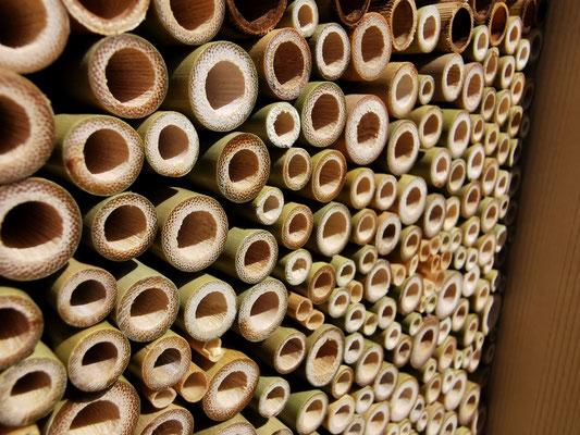 Bambusröhrchen als Füllmaterial