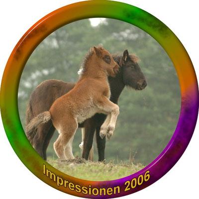 klick auf Impressionen 2006