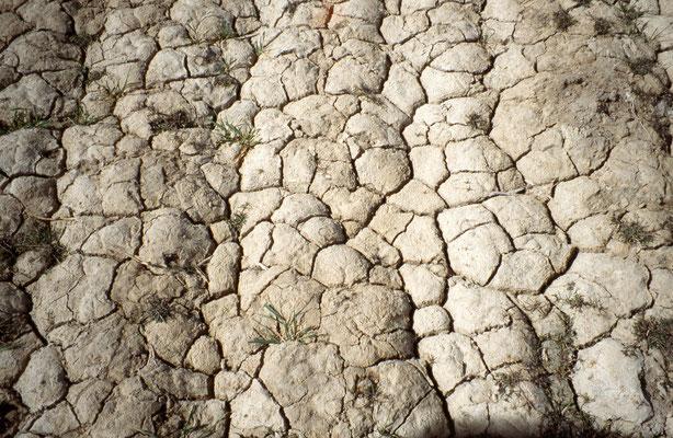 La terre manque d'eau