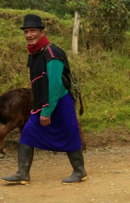 Un homme ramenant ses vaches