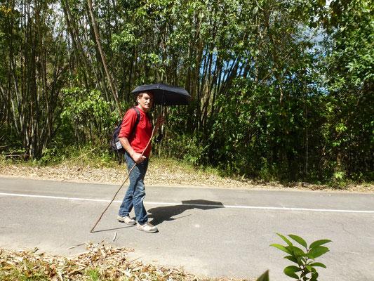 Un marcheur sous son parapluie pare soleil