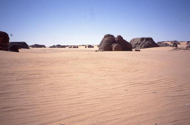Paysage du Sahara