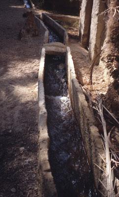 Canal d'irrigation dans un oasis