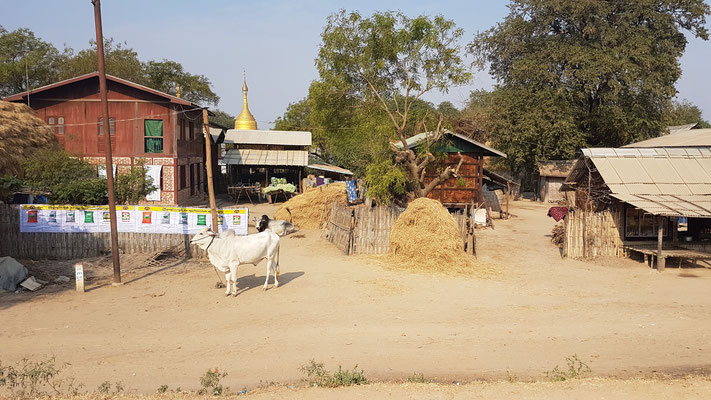 Scène de vie en milieu rural