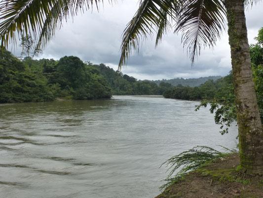 Vue du rio