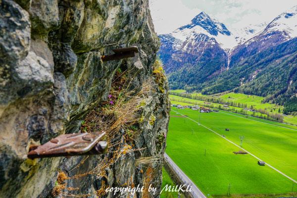 Klettersteig Ybbstaler Alpen : Reinhard schiestl klettersteig d gamskogel stubaier alpen