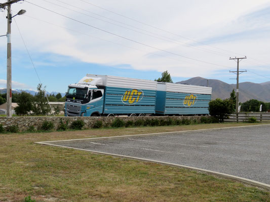 (8) 大型トレーラーはたまに見かけたが、日本のような運送用トラックは全く見なかった。日本のトラック運送はやりすぎだと思う。