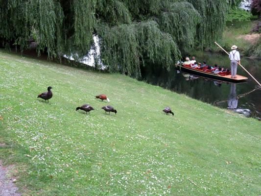 (12) のどかに川面を行く観光用の小舟。