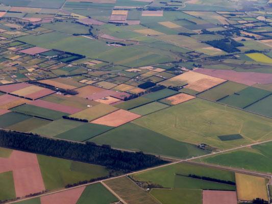 (1) 間もなくクライストチャーチ空港に着陸。眼下にはパッチワークのような放牧場や牧草地が広がる。