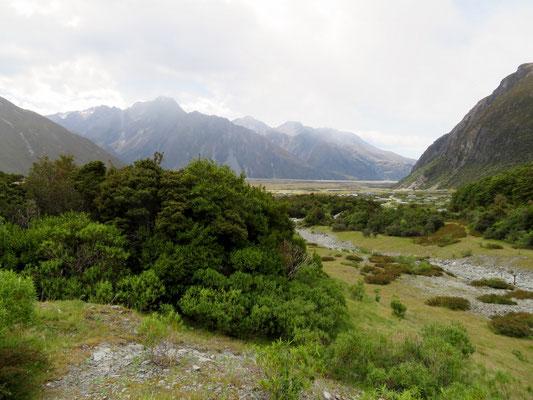 (9) ハーミテージから見たアオラキ/マウントクック方面。次の28年前の写真と比べるとあ然とする。