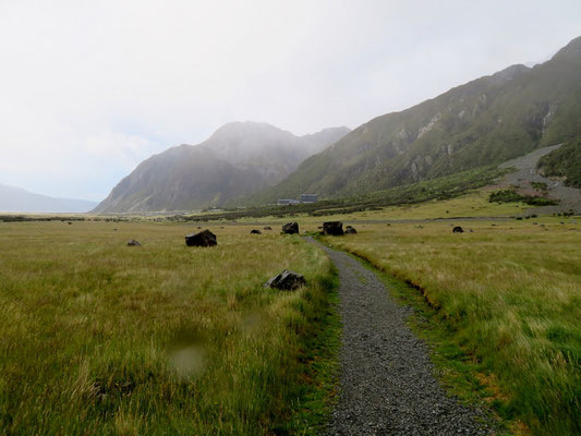 (6) 氷河が運んだ岩。