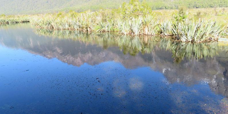 (9) 湖面に鏡のように映るのは、晴天無風の日だけとか。やっぱり、日頃の心がけだよねえ。