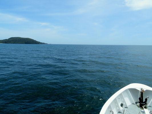 (31) 前方はタスマン海。ミルフォードサウンドは確かに海だった。