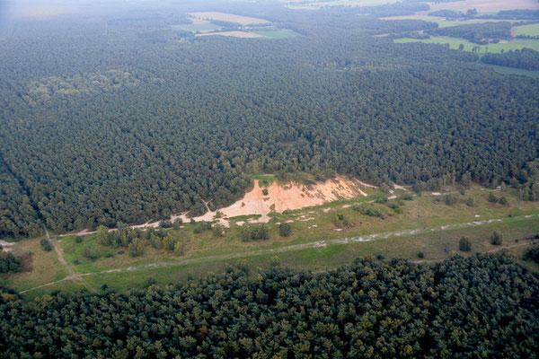 Der Fliegerberg war zur Hundefreilauffläche degradiert worden, ist jetzt aber wieder NSG.  Nun können sich Flora und Fauna wieder erholen.