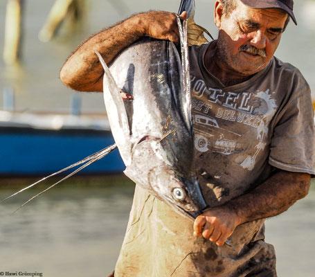Fischer bringt Schwertfisch an Land.