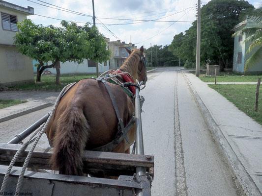 Ausflug in die Berge mit Pferdewagen; bevor es dann hoch hinaus ging wechselte der Bauer die Karre gegen eine weniger komfortable.