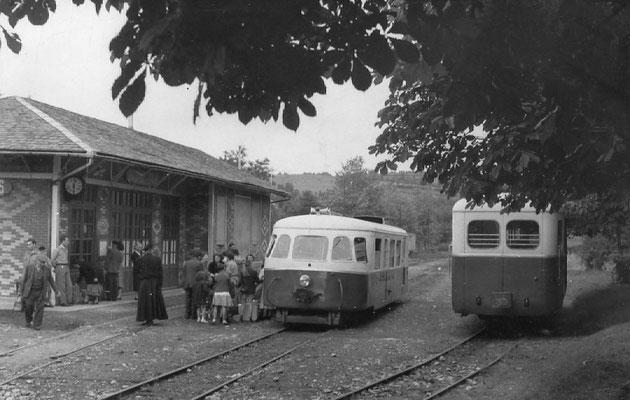 Tarn-095 : Lacaune-les-Bains. 2 septembre 1956. Autorails Billard A80D et Verney SCF. Cliché Jacques Bazin