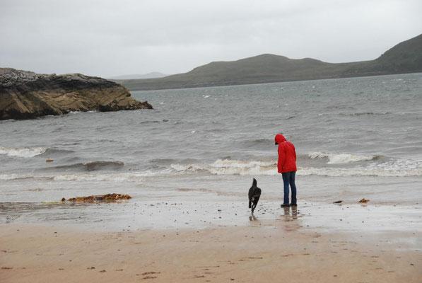 Am Strand von Aultbea, Loch Ewe, Wester Ross, Highlands, Schottland
