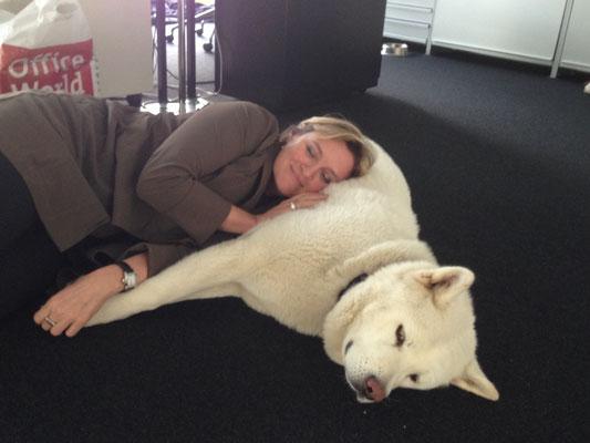 Archie Star und Stella im Büro