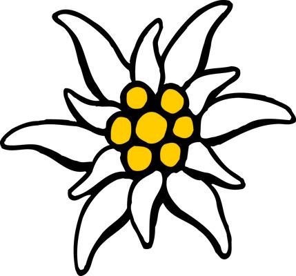 цветок эдельвейс картинки на прозрачном фоне каждая девушка