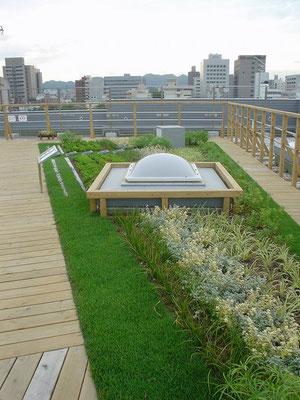 役所の屋上緑化