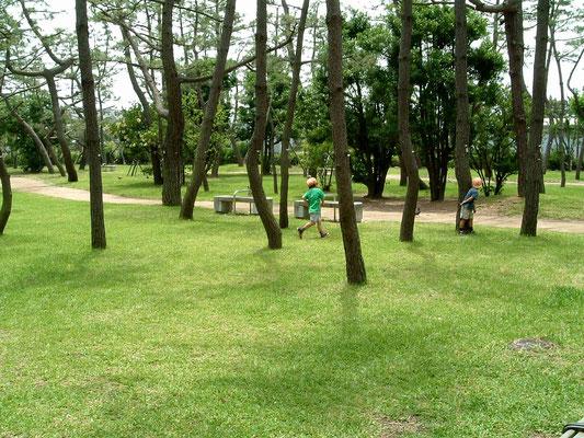 兵庫県立舞子公園